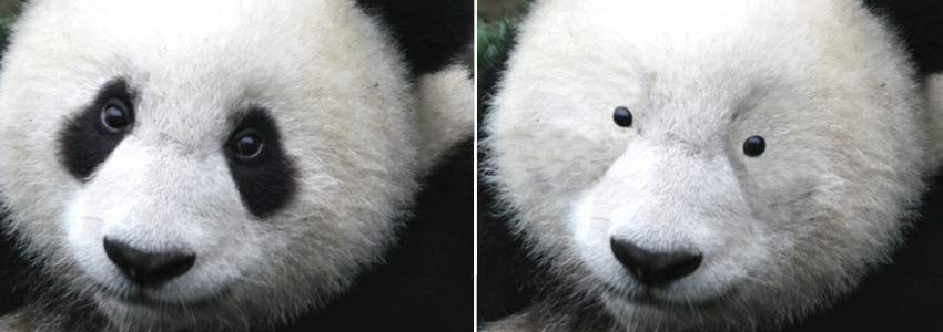 how to get rid of panda eyes from mascara